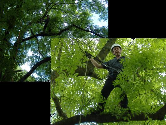 2008-05-25-Kletterer