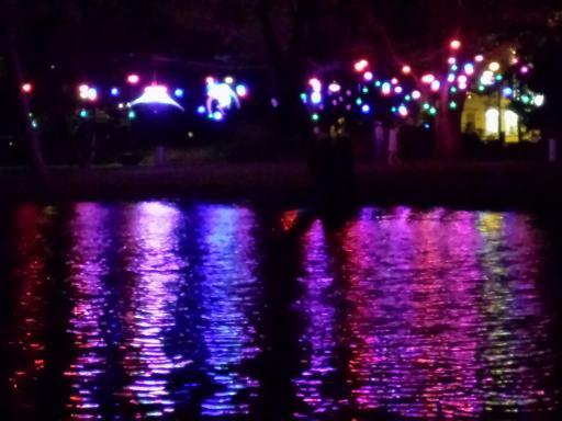 2013-12-06-Lichterfestival